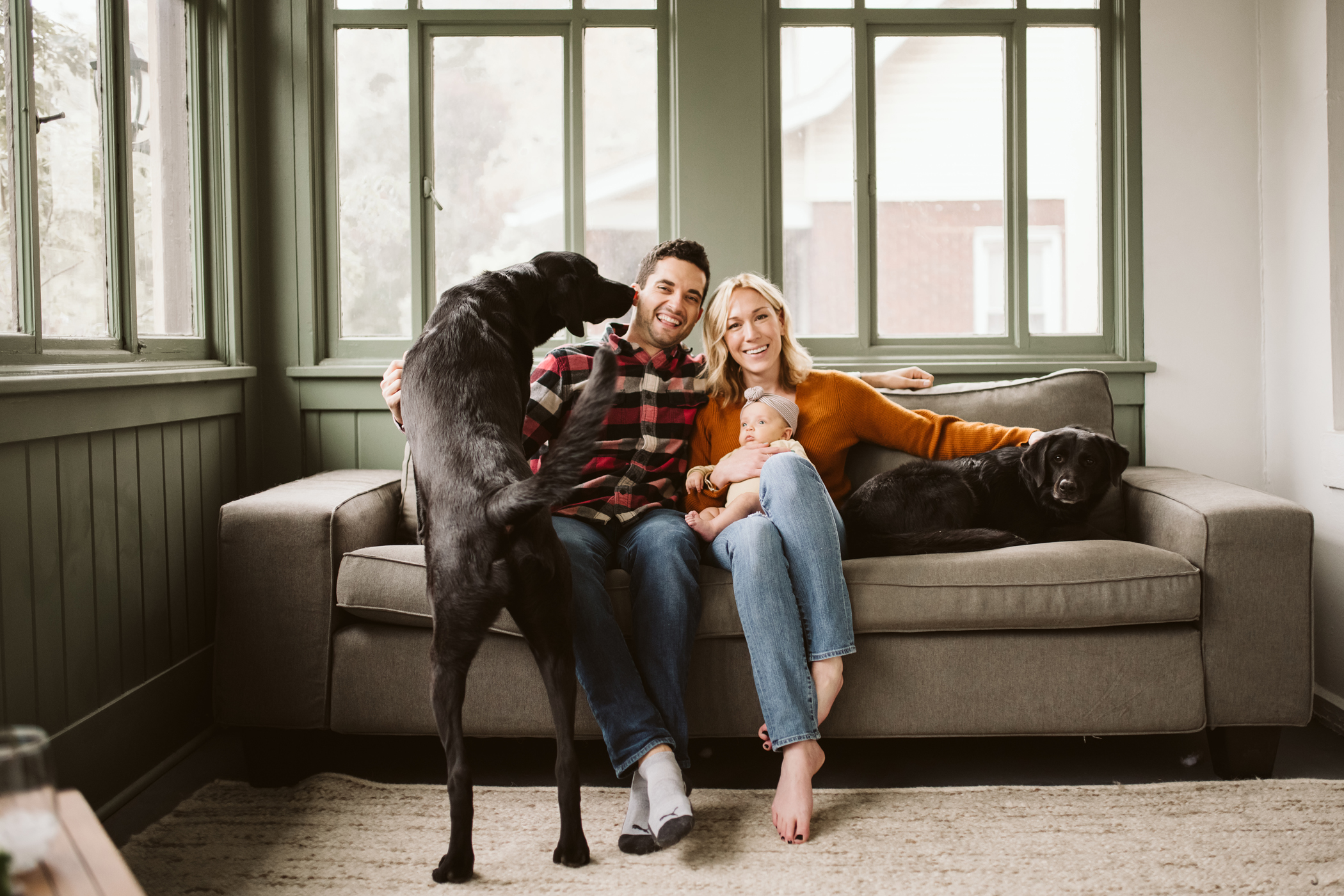 Lifestyle portrait of a family holding their newborn baby with their two black dogs. Photo by Laura Mares Photography.