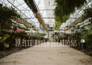Read more about the article 12 Beautiful Portrait Locations in Pittsburgh