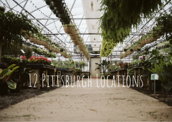 12 Beautiful Portrait Locations in Pittsburgh