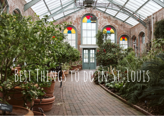 Best Things to do in St. Louis – Pittsburgh Lifestyle Photographer