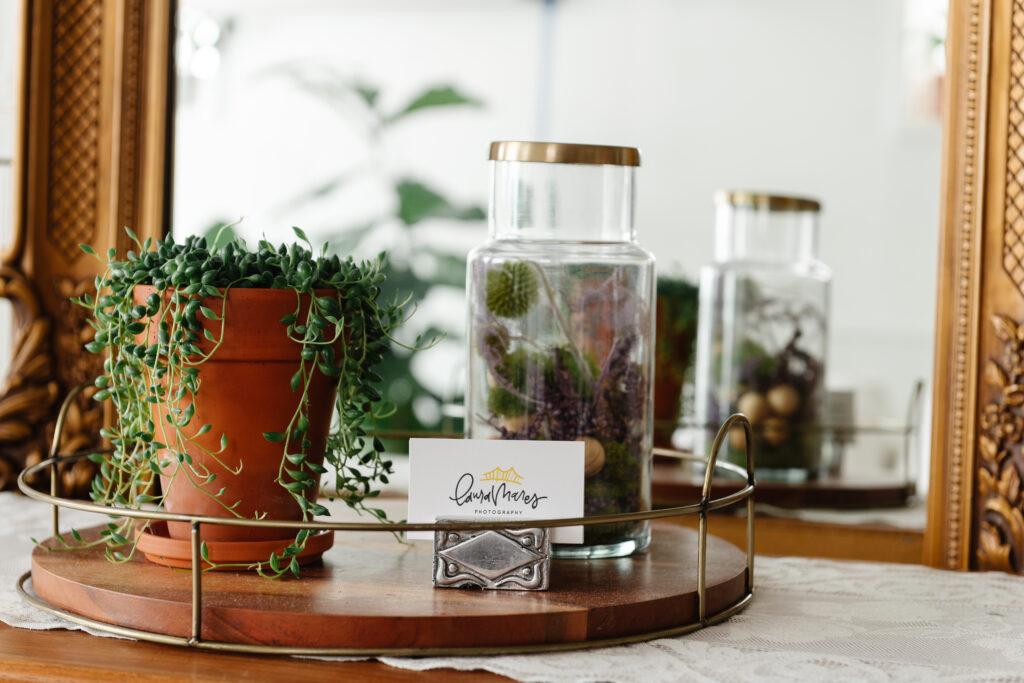 house plants, business cards and dried flowers on the sideboard in the bohemian studio