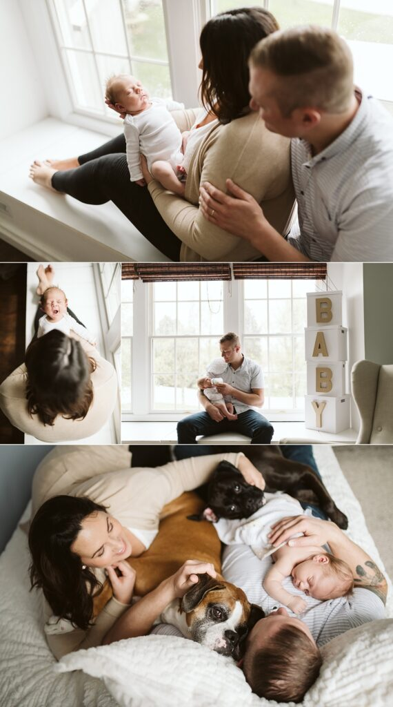 lifestyle photos of a family with their newborn baby and dogs